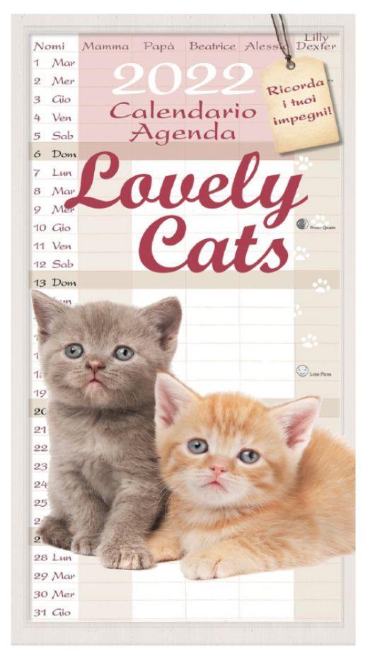 CALENDARI LOVELY CATS 1pz 2022